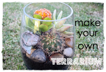 IMG 3731textweb Make! Make your own Terrarium