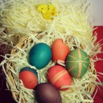 Dye-your-own-Easter-Eggs