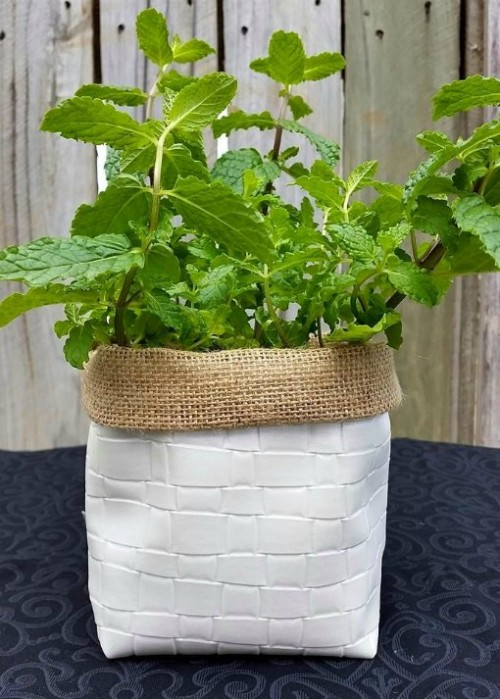 Perfect pot holder for your herbs