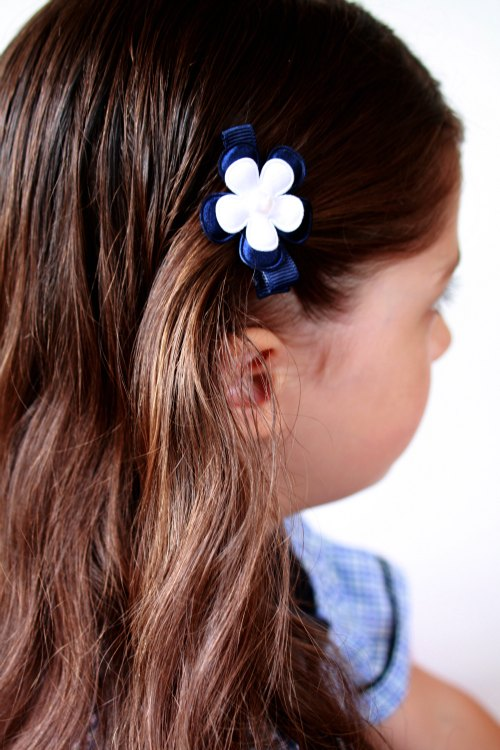 Back to School hair clips