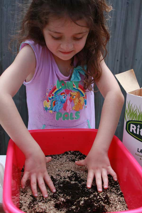Step 1 Mix soil and seeds